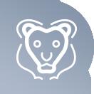 icon-lion